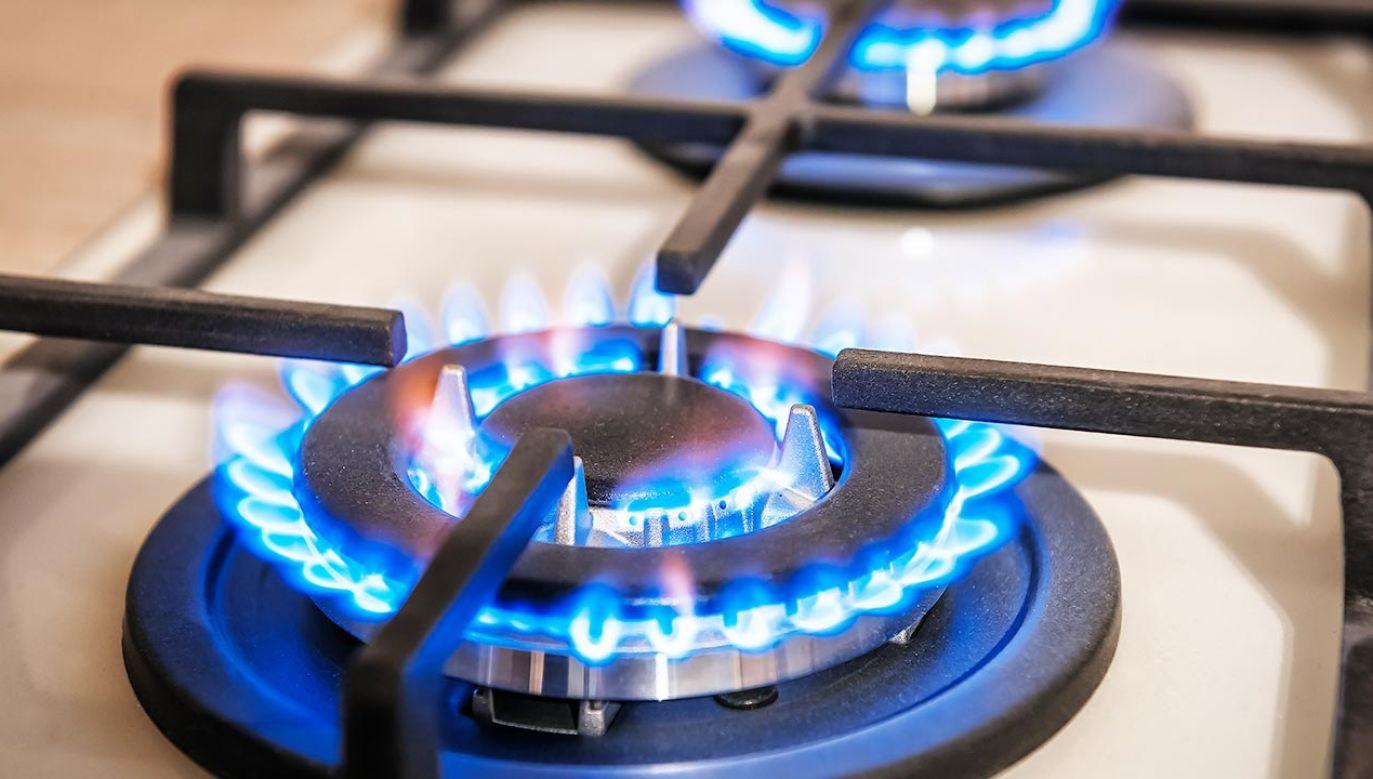 Mieszkańcy nie mogą zmienić niemieckiego dostawcy gazu (fot. Shutterstock)