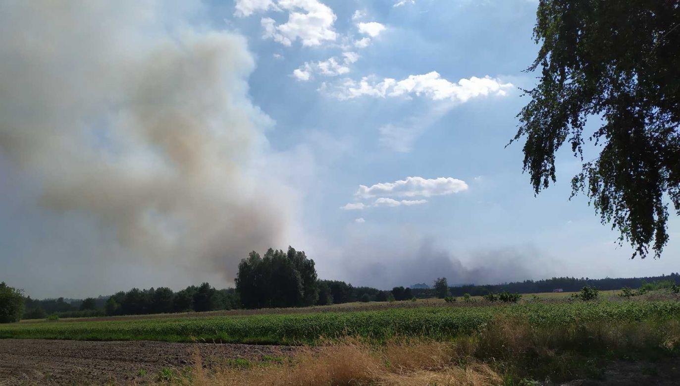 Strażacy pracują na miejscu od godziny 12. Walka z pożarem w rejonie Myślakowic potrwa przynajmniej do wieczora, ale dogaszanie będzie trwało także w czwartek (fot. Twoje Info)