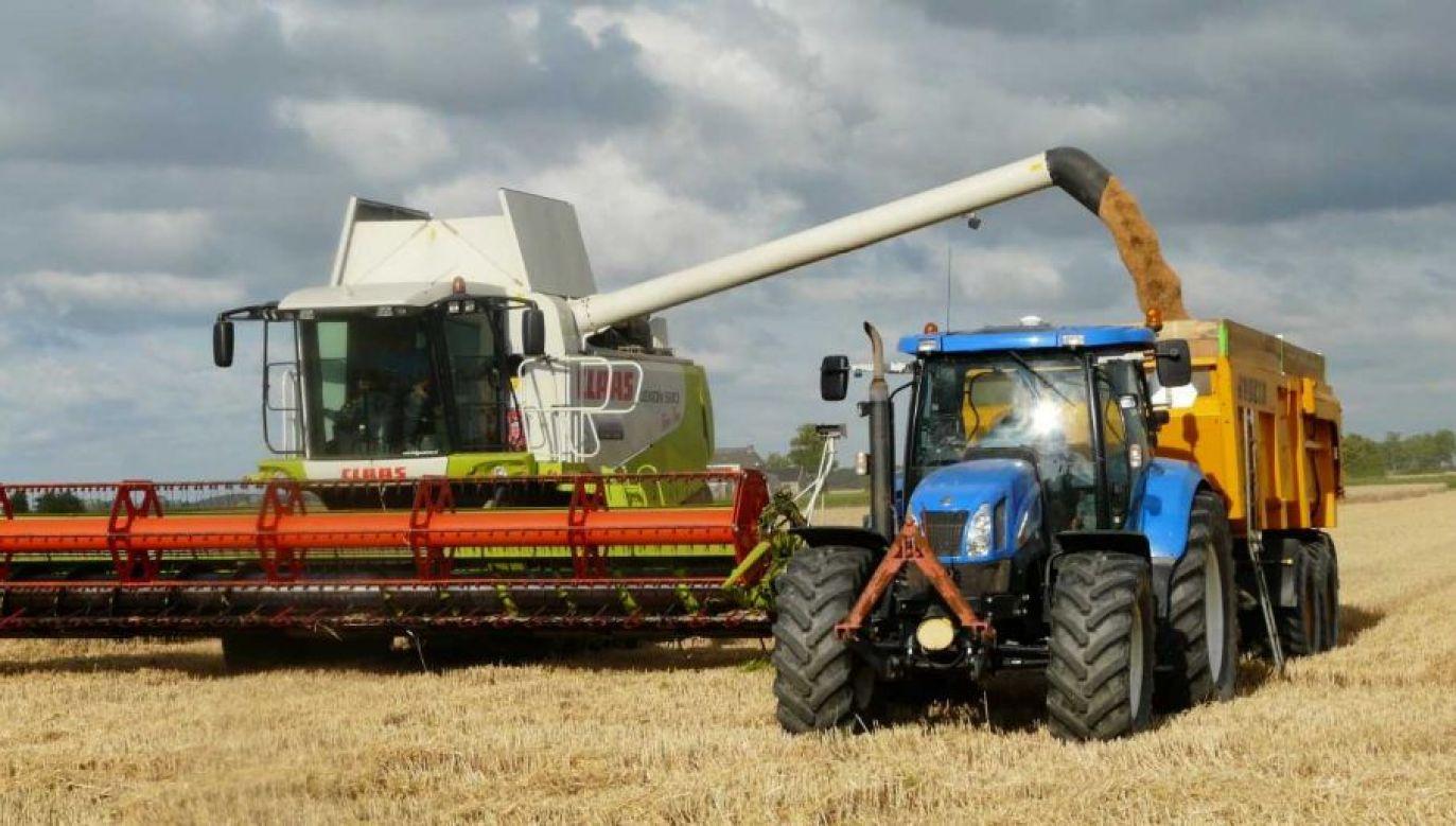 Zbiory są dobre – ocenił szef resortu rolnictwa (fot. Pexels)