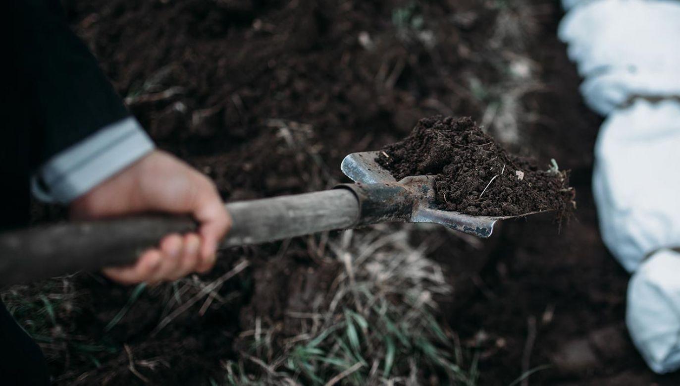 Mężczyzna miał zakopać psa (fot. Shutterstock/Nomad_Soul, zdjęcie ilustracyjne)