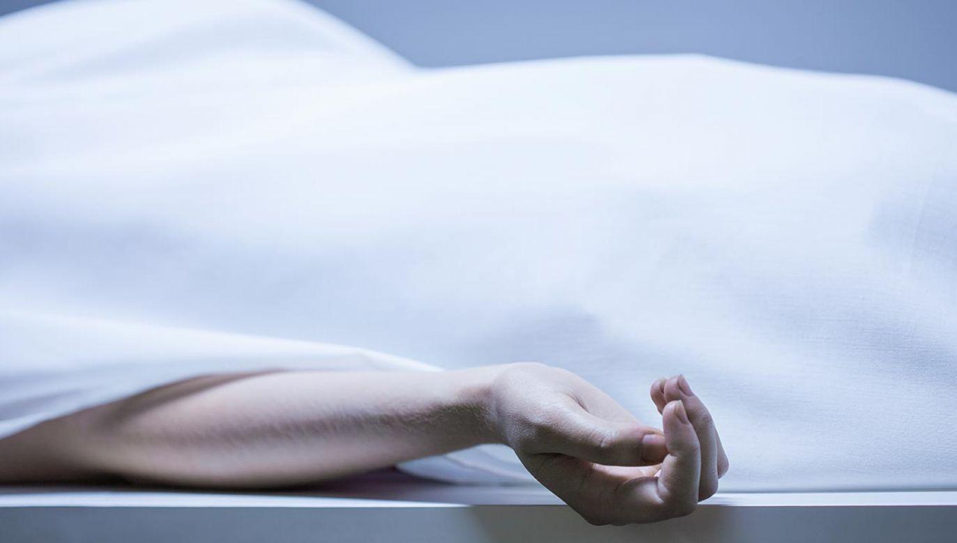 Okoliczności tragedii bada prokuratura i policja (fot. Shutterstock/ESB Professional)