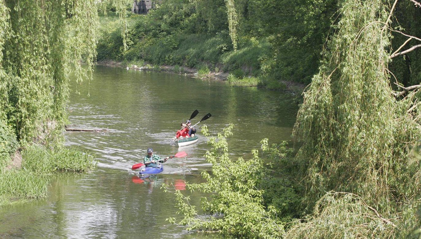 Służby apelują, by nie korzystać z wody znajdującej się w rzece oraz powstrzymać się od spływów kajakowych i kąpieli (fot.  PAP/Andrzej Grygiel - zdjęcie ilustracyjne)
