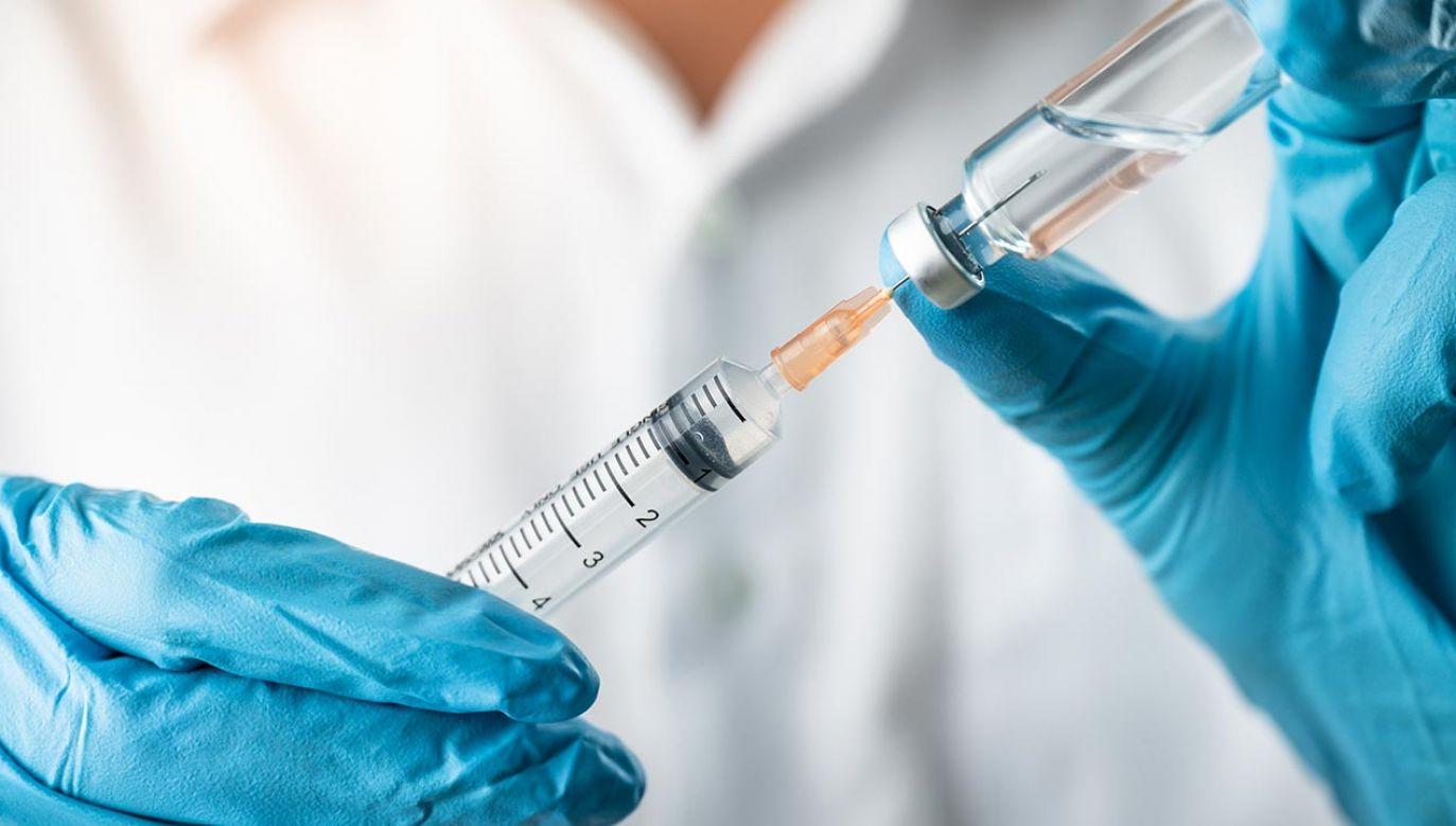 Ta technologia to także przyszłość spersonalizowanych terapii onkologicznych (fot. Shutterstock/PhotobyTawat)