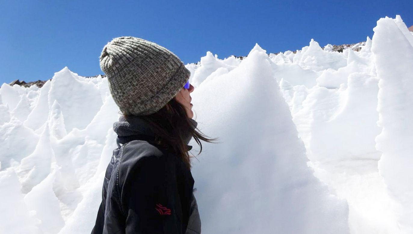 W topniejącej się dziś na naszych oczach Arktyce następuje powolne uwalnianie do oceanu setek gatunków przystosowanych do życia w lodzie (fot. Steve Schmidt/CU Boulder)
