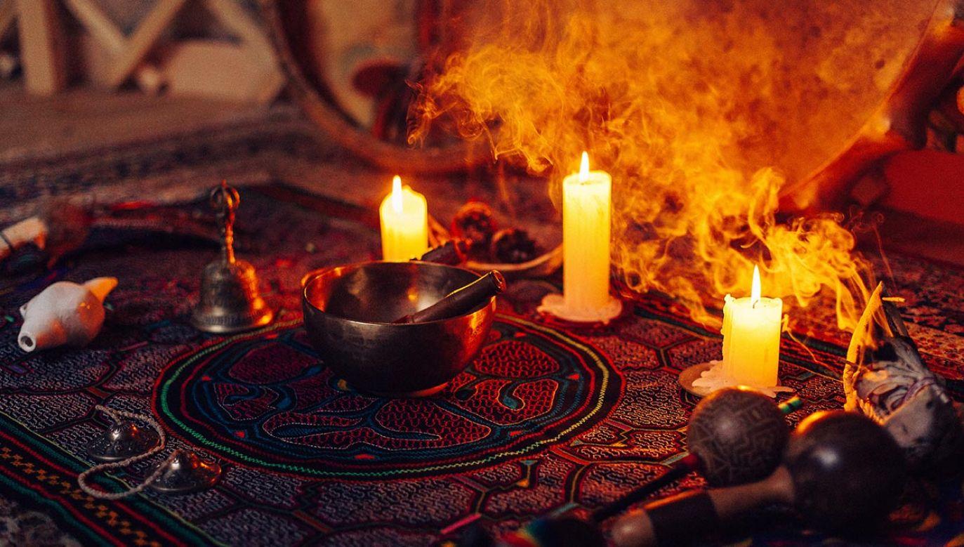 Krew z żółwia polecił rodzicom szaman (fot. Shutterstock/samaliusfoto)