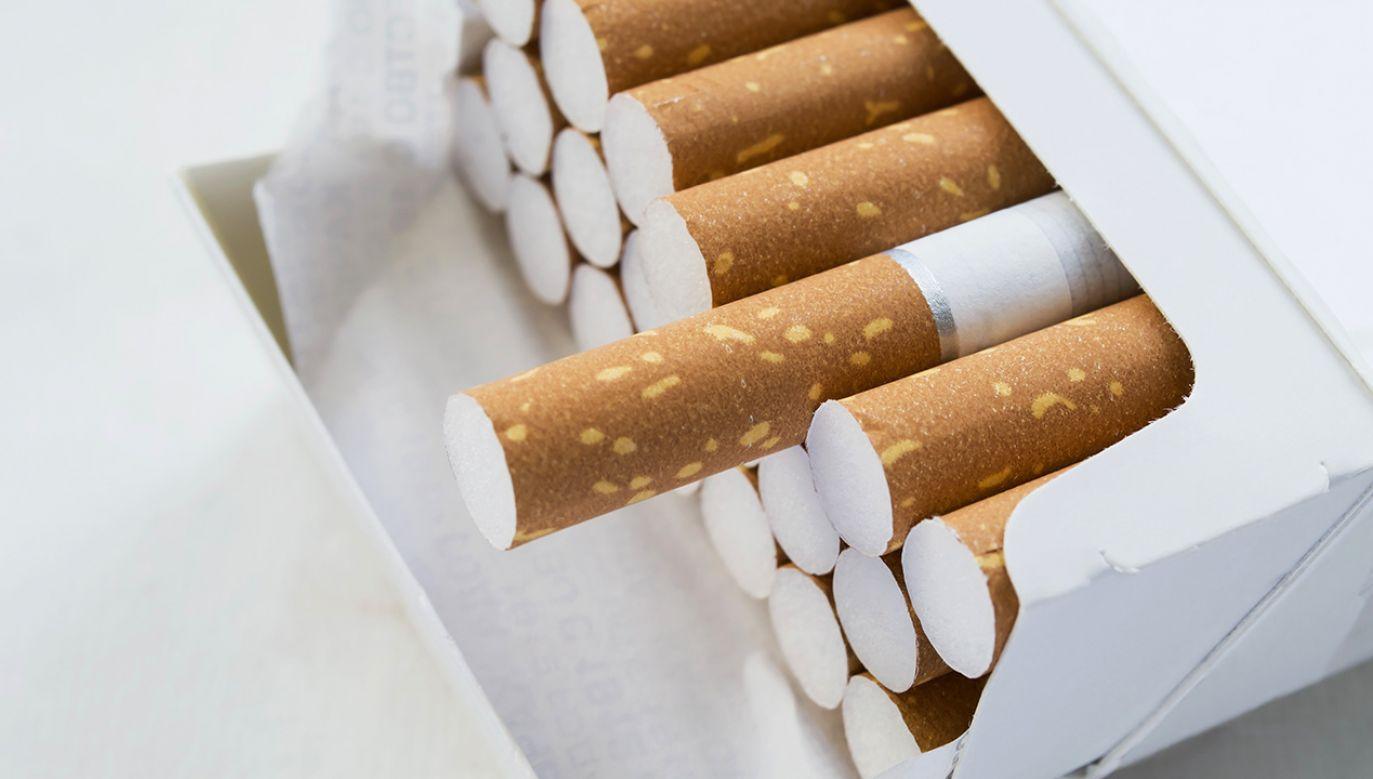 Papierosy mają smakować tytoniem i niczym innym (fot. Shutterstock/Tarzhanova)