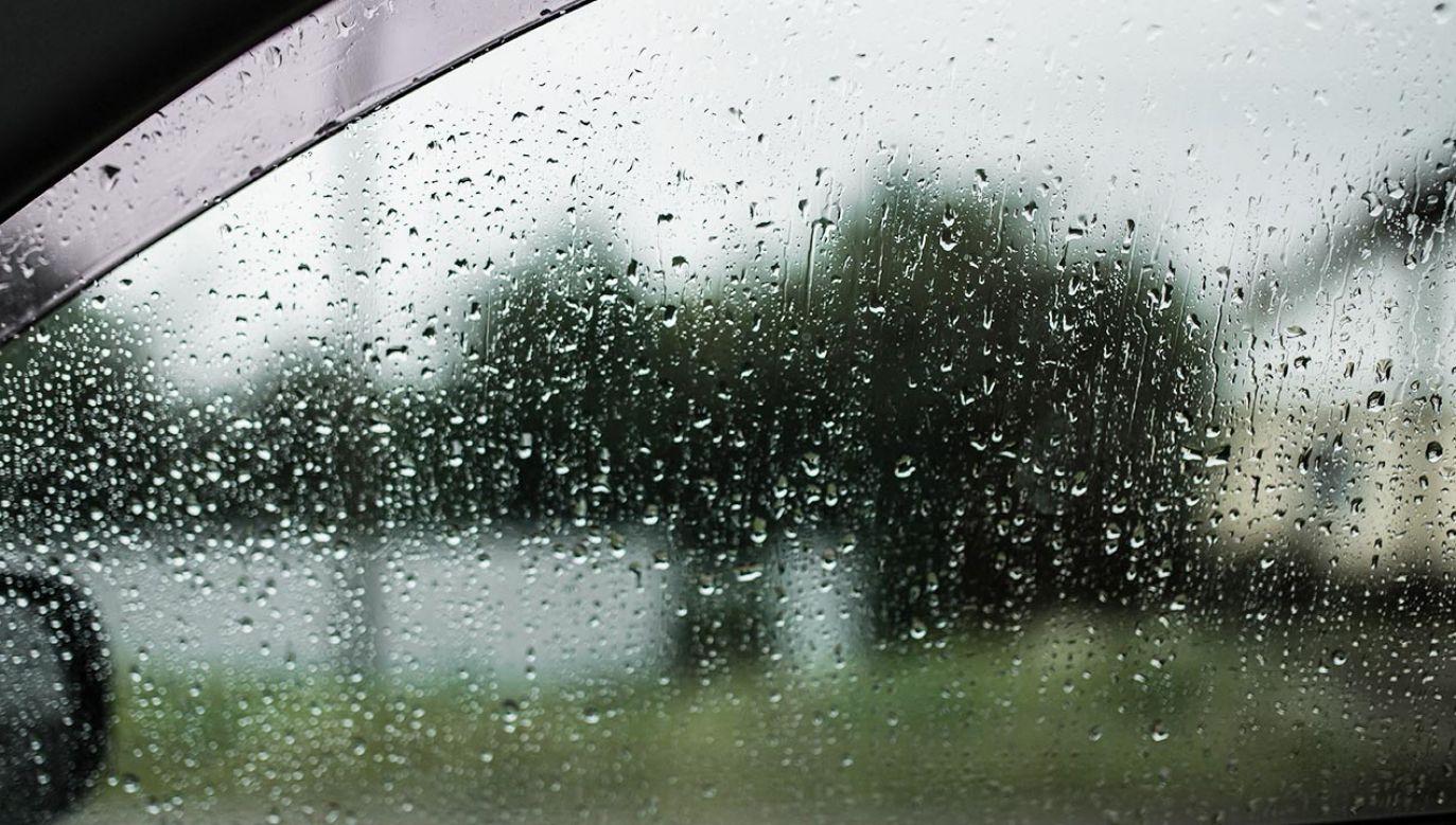 Pogoda nie rozpieszcza (fot. Shutterstock/Markik)