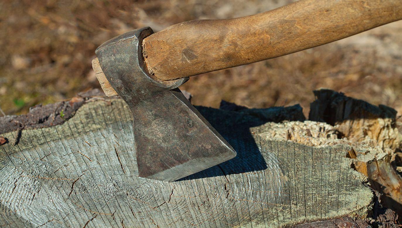 Zwłoki porzucili w rowie w pobliżu domu ofiary (fot. Shutterstock/Serrgey75)