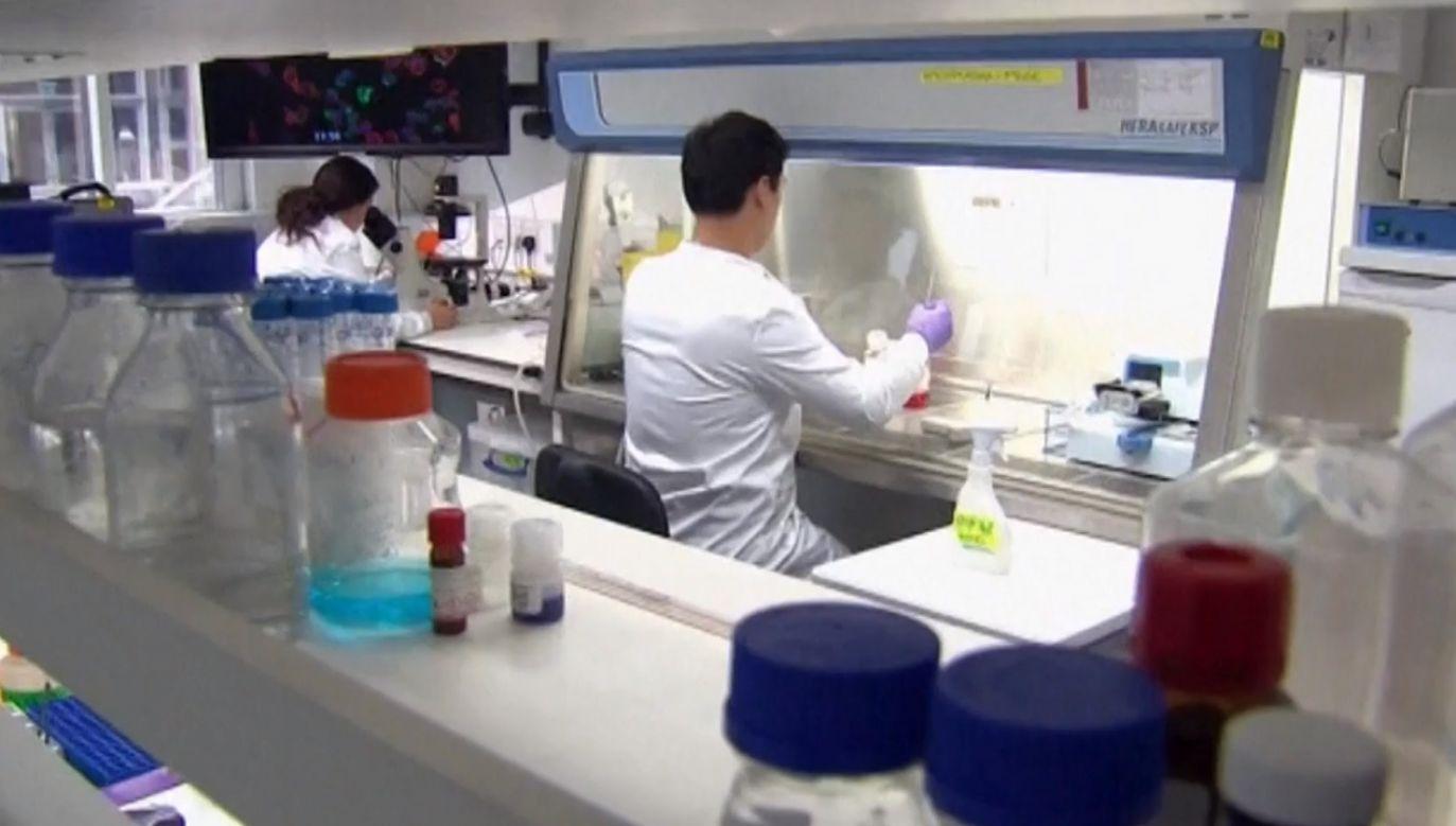 Następnie w laboratorium komórki zostają przeprogramowane, zmodyfikowane genetycznie – wyjaśniał prof. Giebel (fot. TVP)