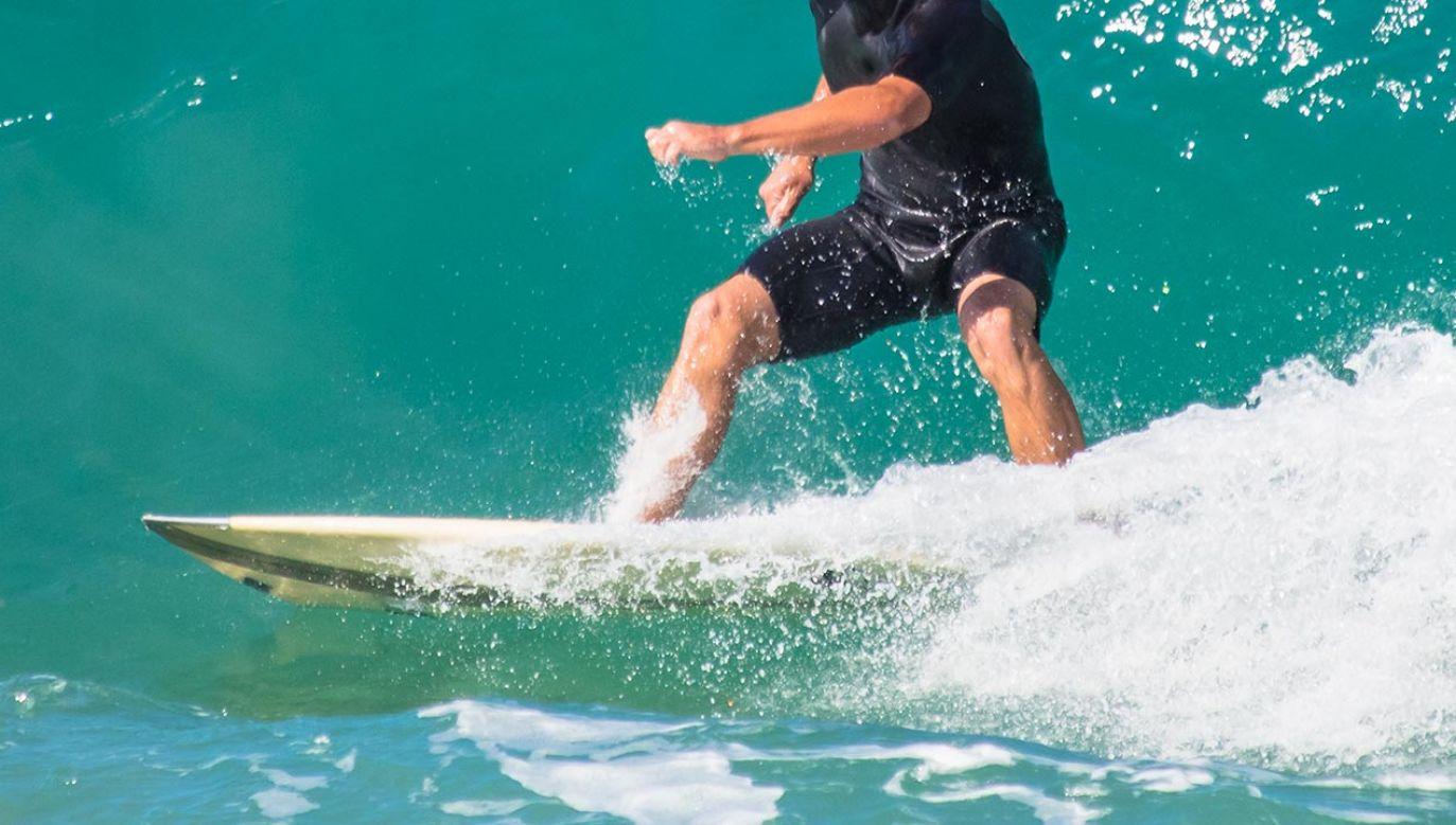 Mężczyzna w wieku około 50 lat zmarł po ugryzieniu przez rekina u wybrzeży Tuncurry Beach (fot. Shutterstock/JCLobo)