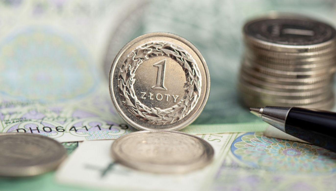 Kościński o przeniesieniu środków z OFE na IKE (fot. Shutterstock/Proxima Studio)