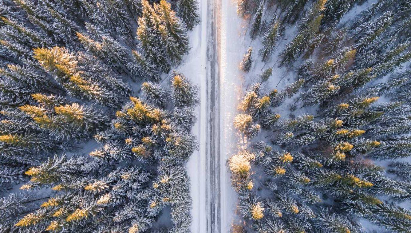 Jaka będzie tegoroczna zima? (fot. Pexels)